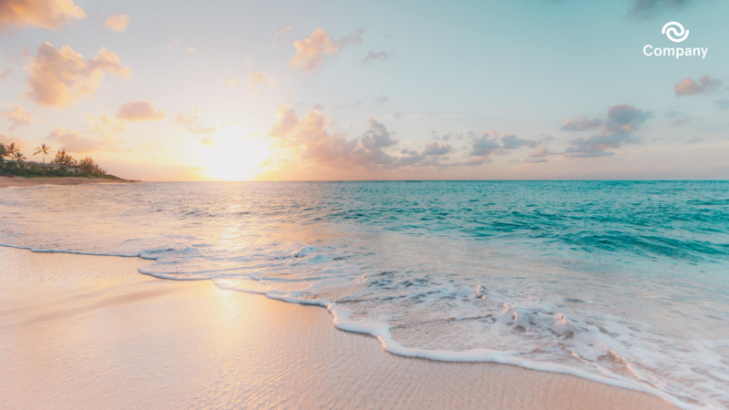 Beach Zoom background