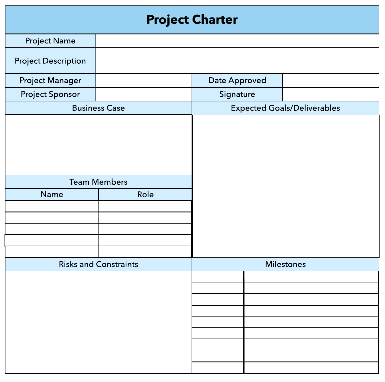 project life cycle project charter example