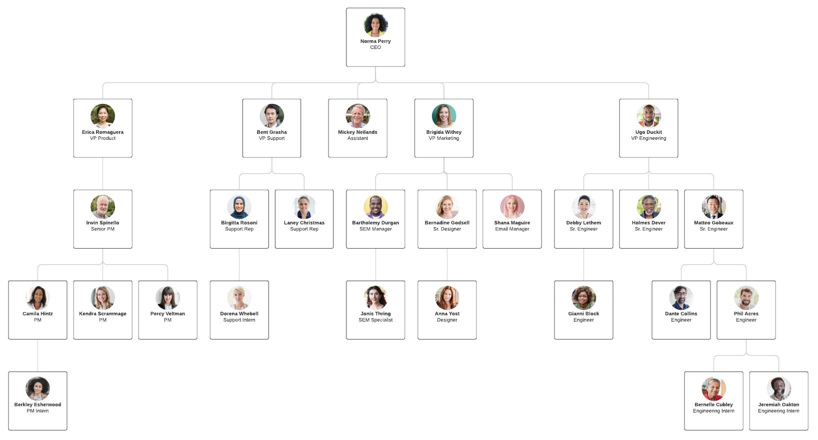 Organizational Chart Templates Lucidchart