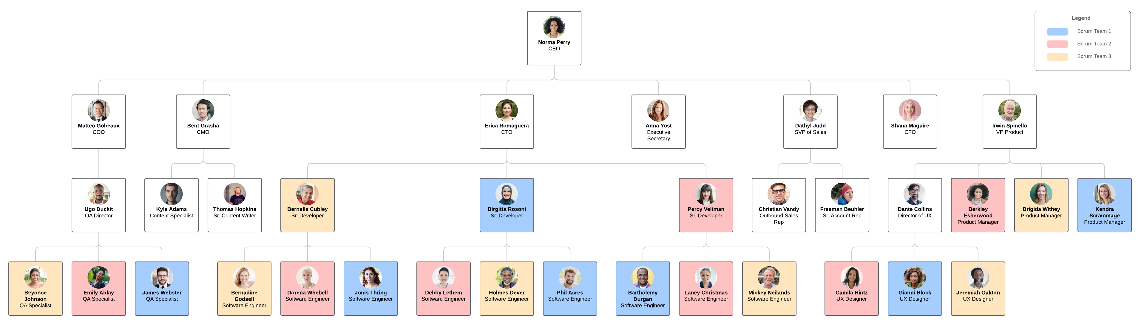 project org chart template