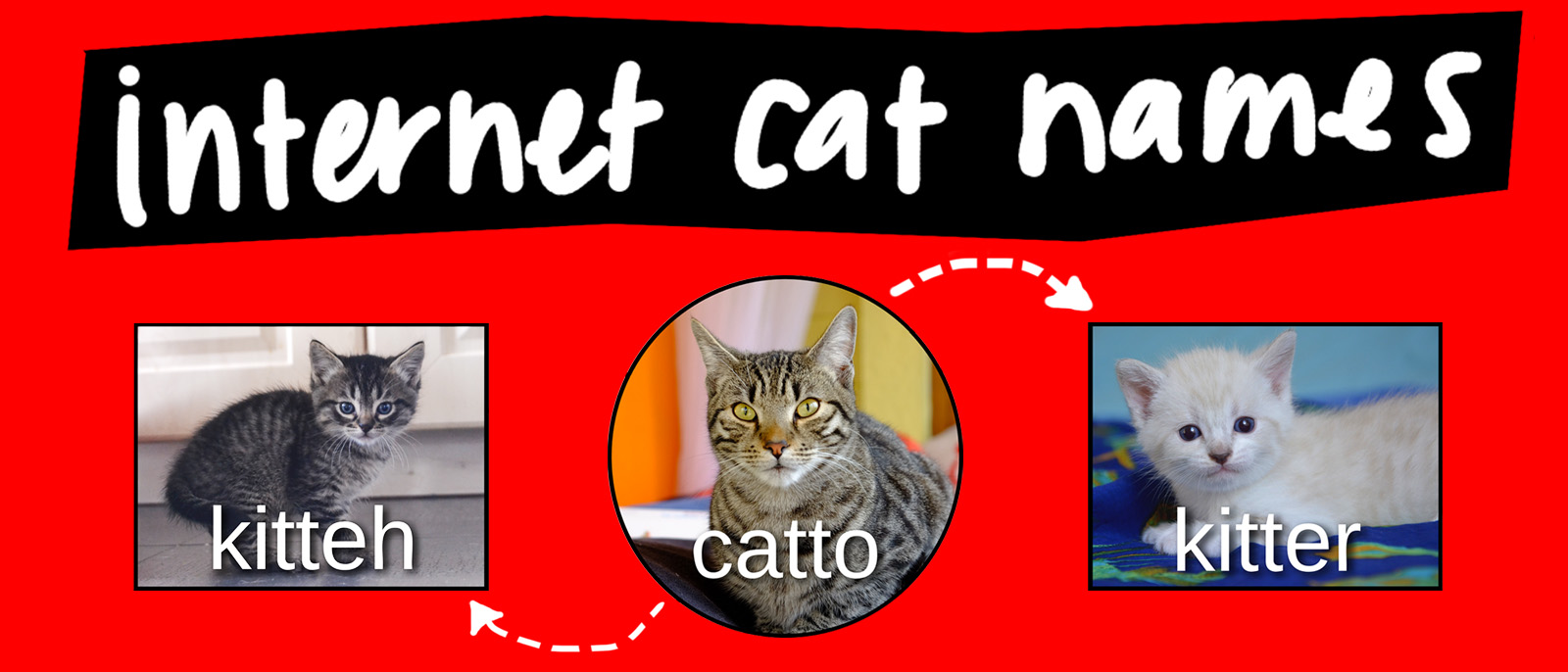 Catto memes video diagram lucidchart blog ccuart Image collections