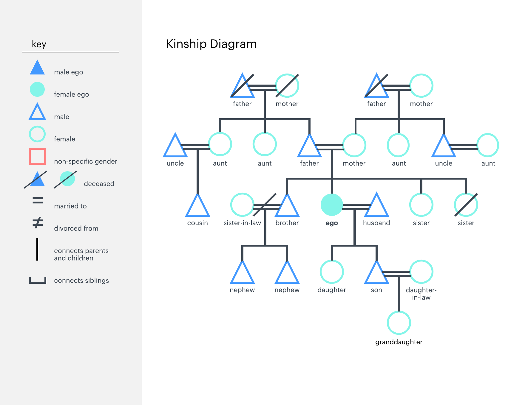 How to make a kinship diagram online lucidchart blog kinship diagram template ccuart Gallery