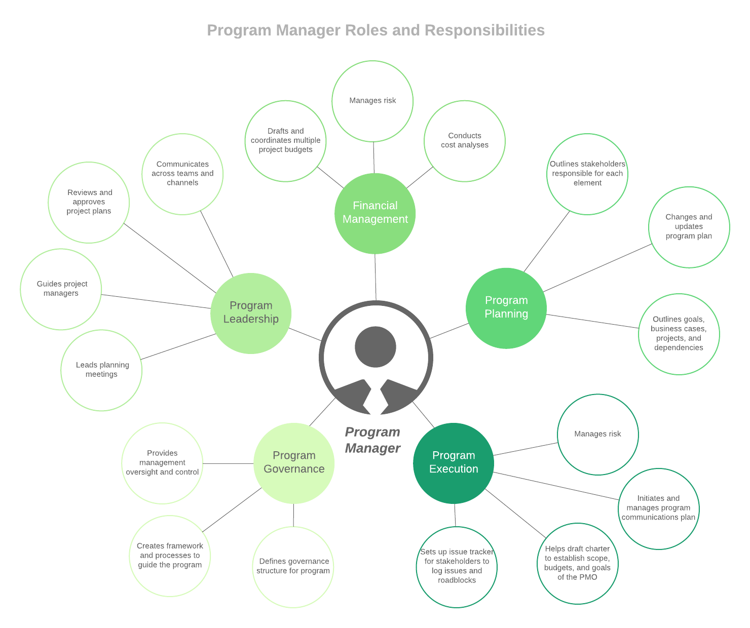 roles and responsibilities of a program manager