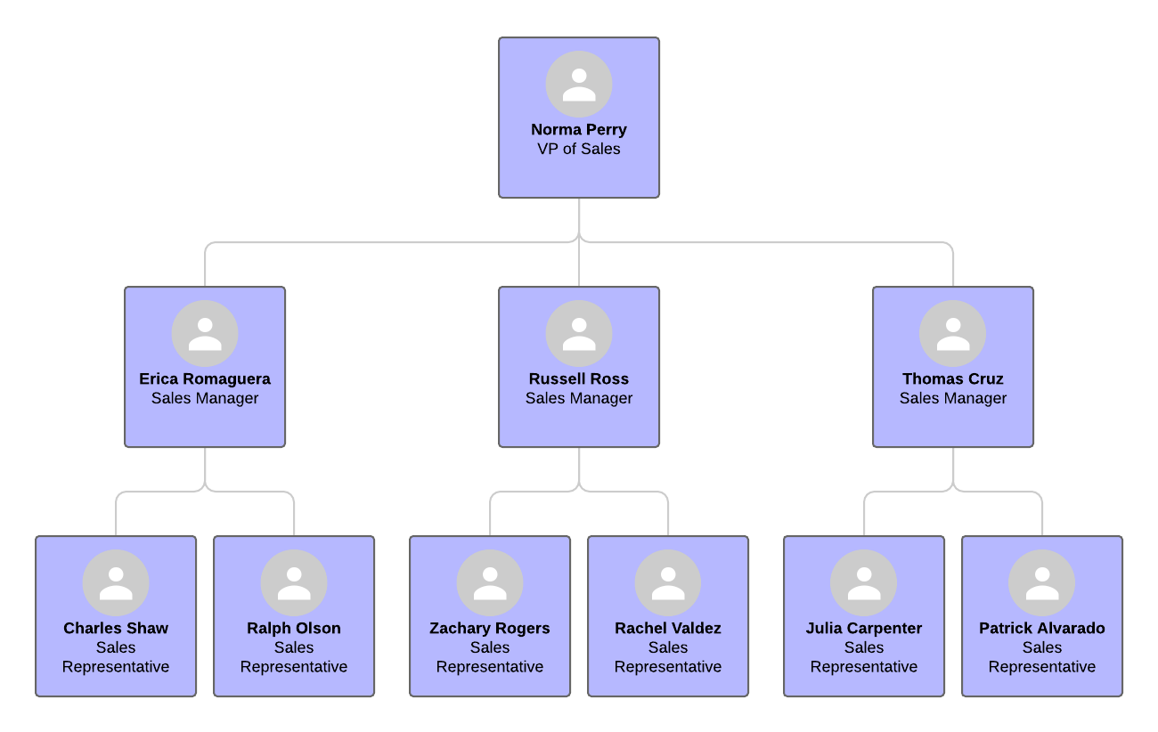 island sales organization structure