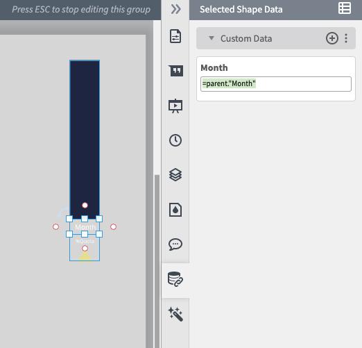 custom data field