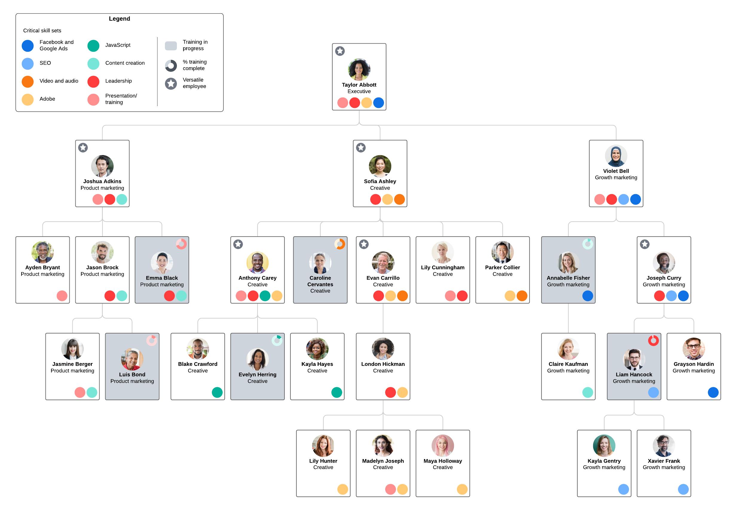skills gap analysis org chart example