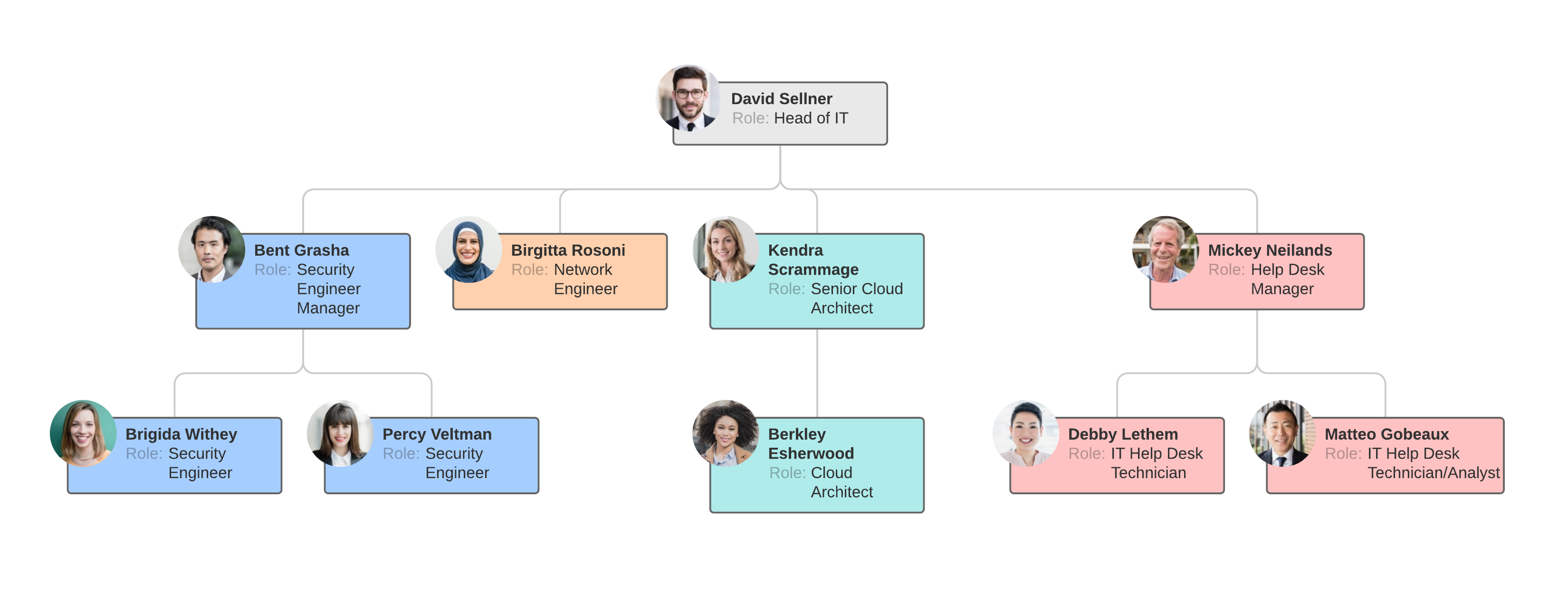 functional org chart example