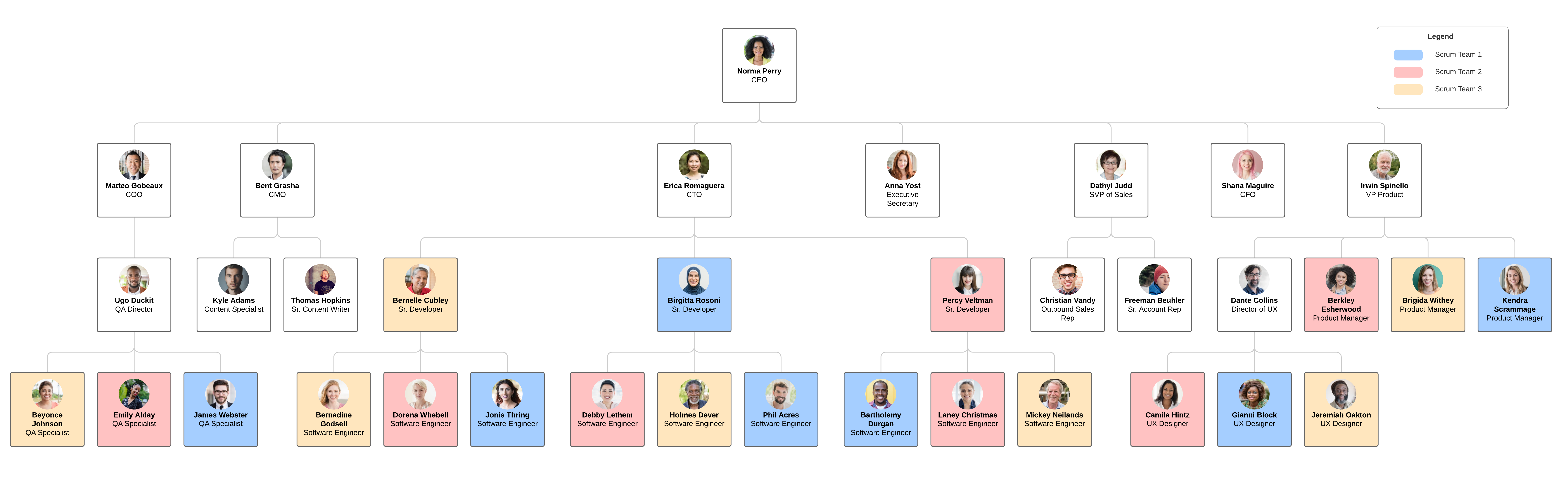 team-based org chart example