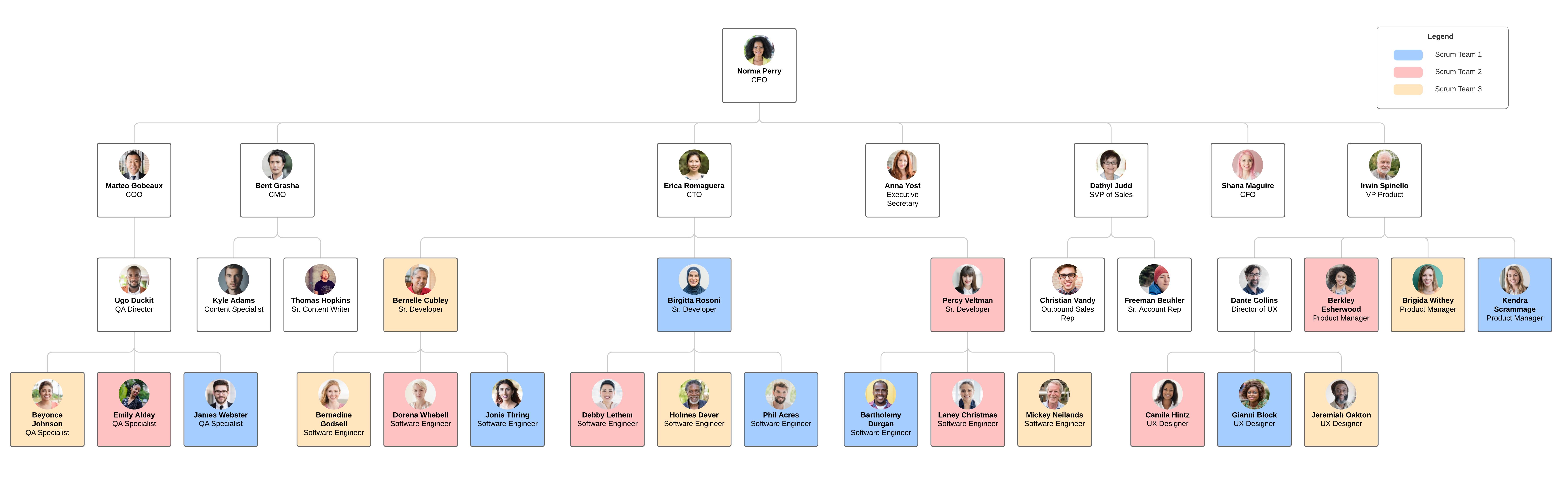 exemple d'organigramme basé sur l'équipe