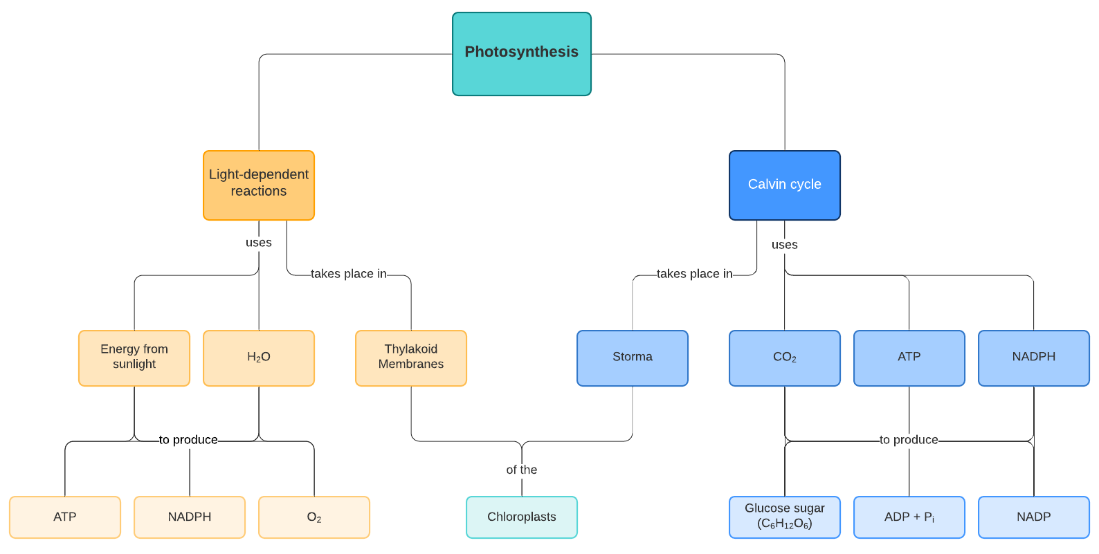How To Make A Concept Map In Google Docs