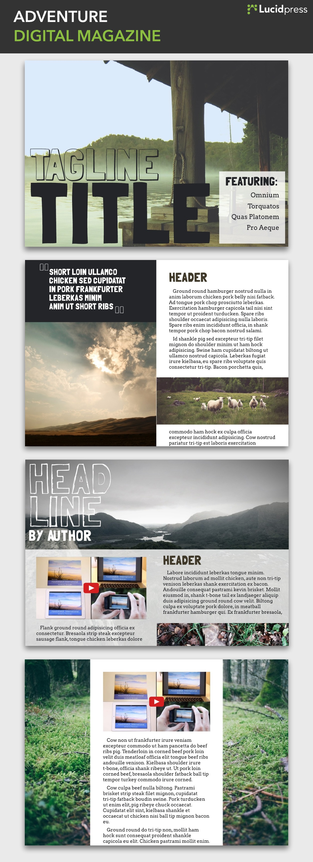 Adventure Story Ideas 14 magazine layout design ideas for your inspiration
