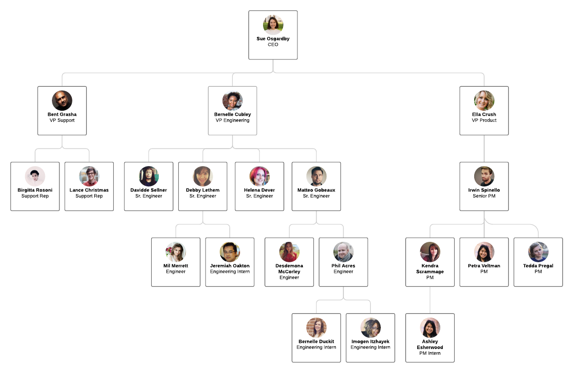 org chart with photo