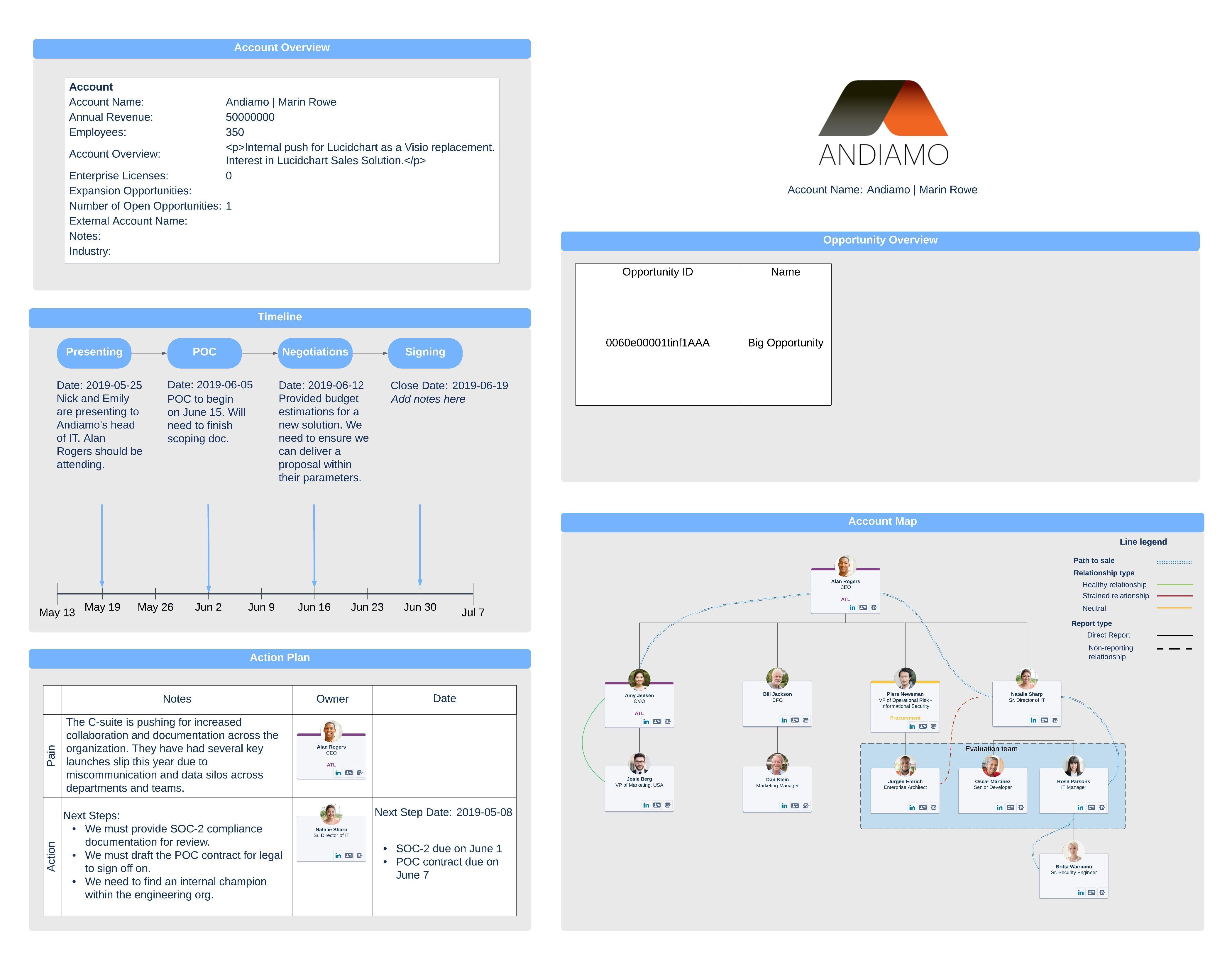 sales account plan example