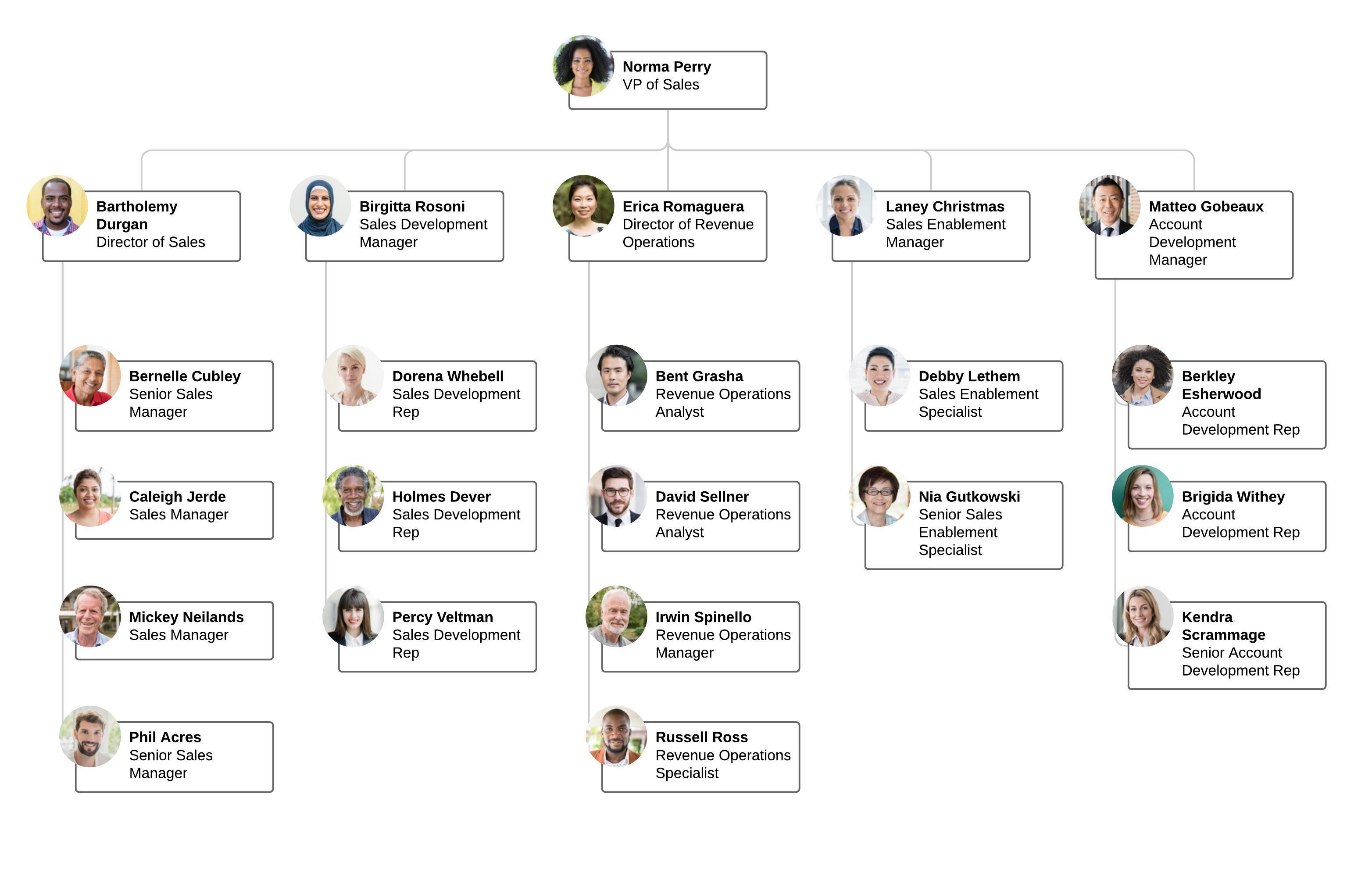 Sales Org Chart Example