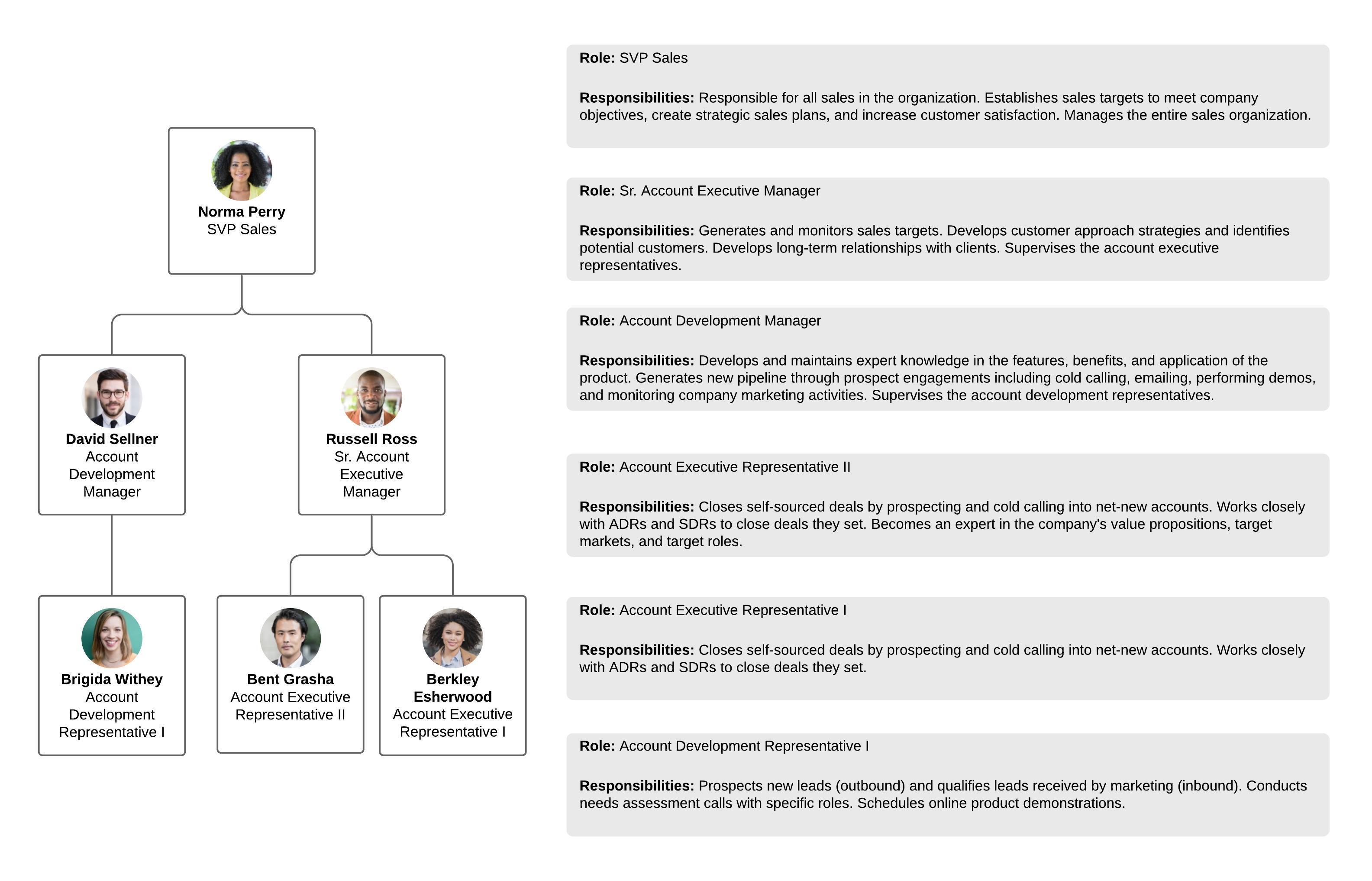 Modèle d'organigramme