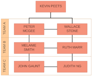 what is an organizational chart