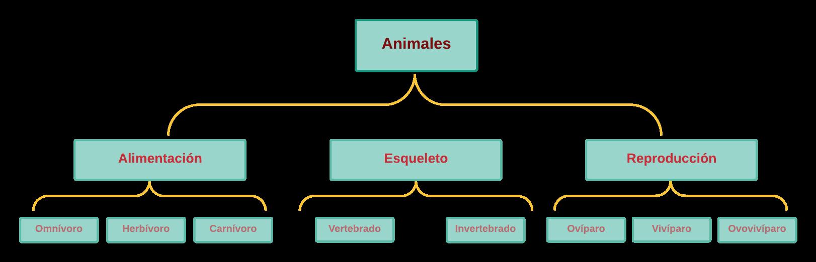 Cuadro Sinoptico de los Animales