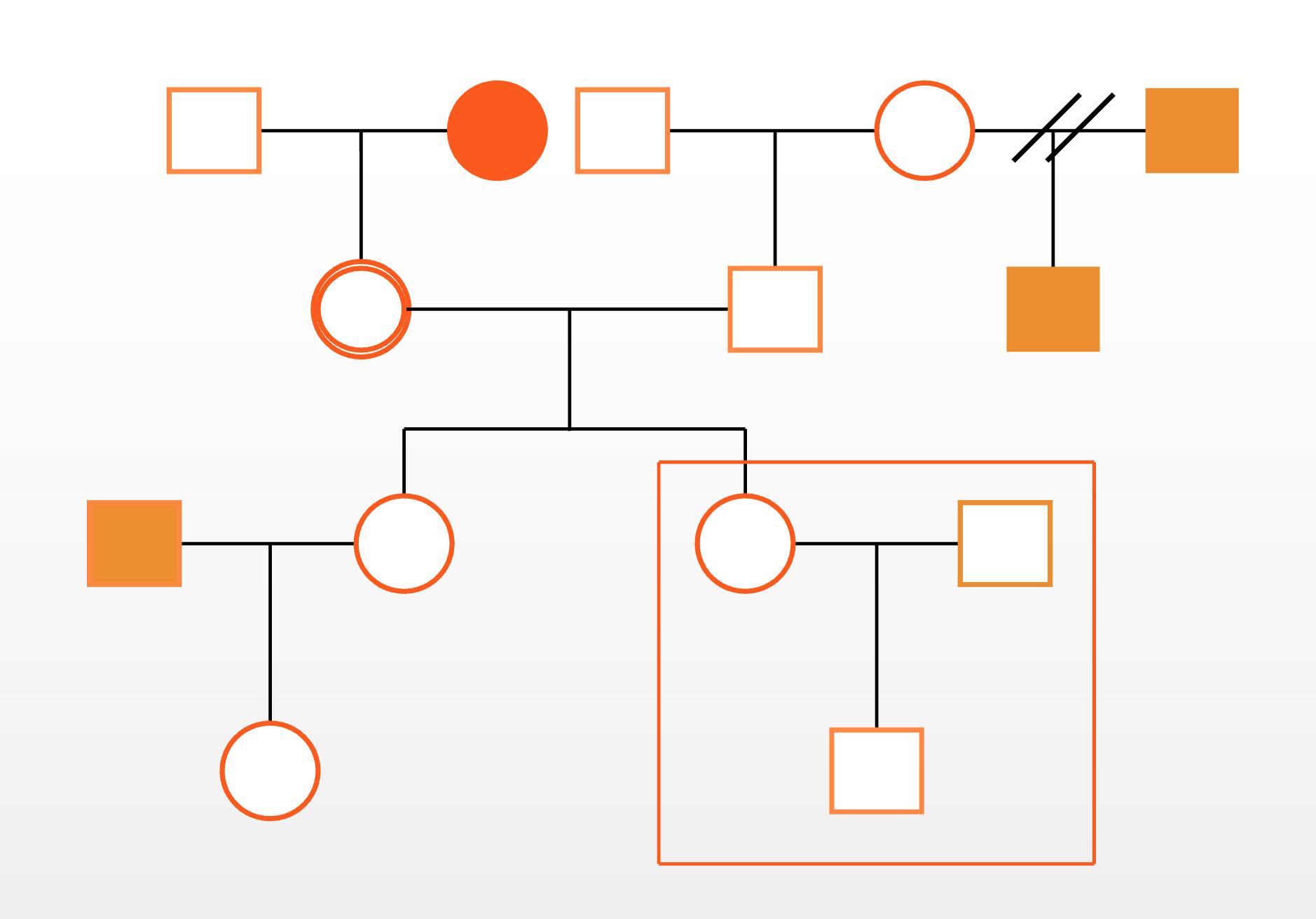 ジェノグラムの例