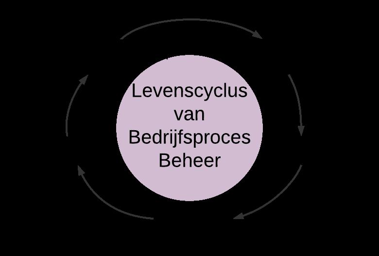 BPM-cyclus