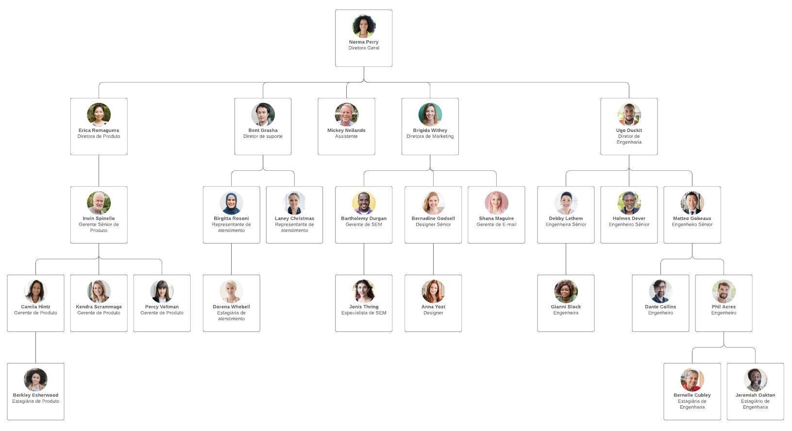 Exemplo de estrutura organizacional linear