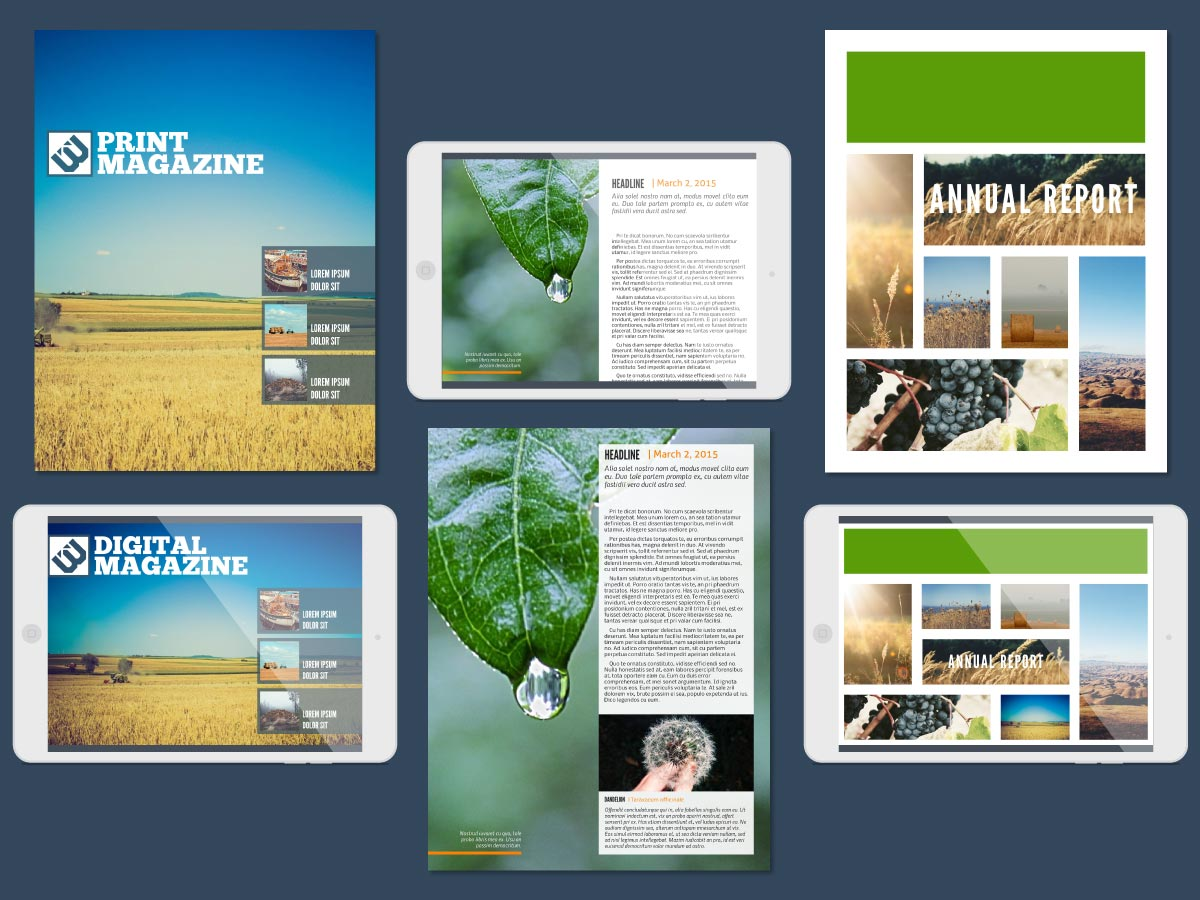 lucidpress indesign newsletter templates alternative