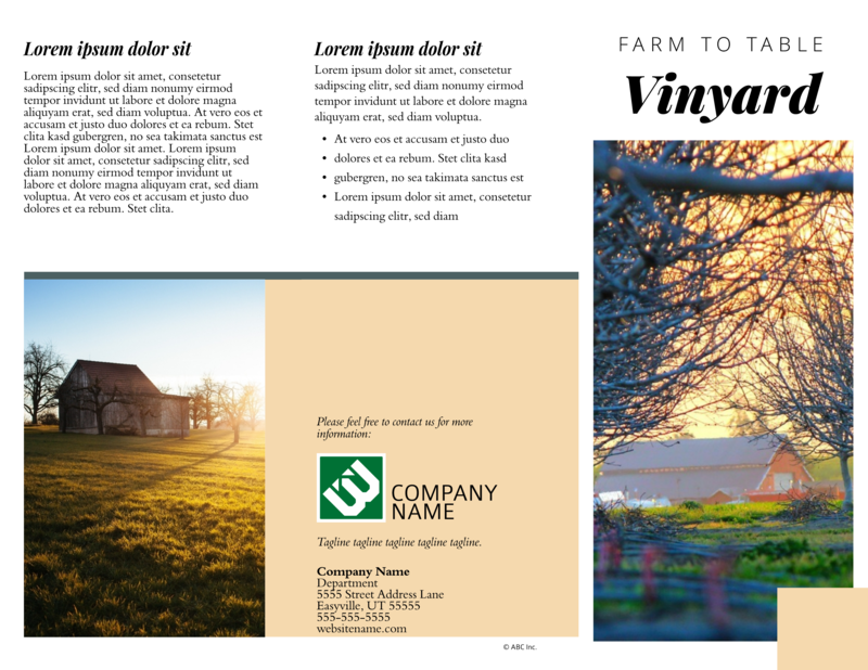 Wine country brochure template