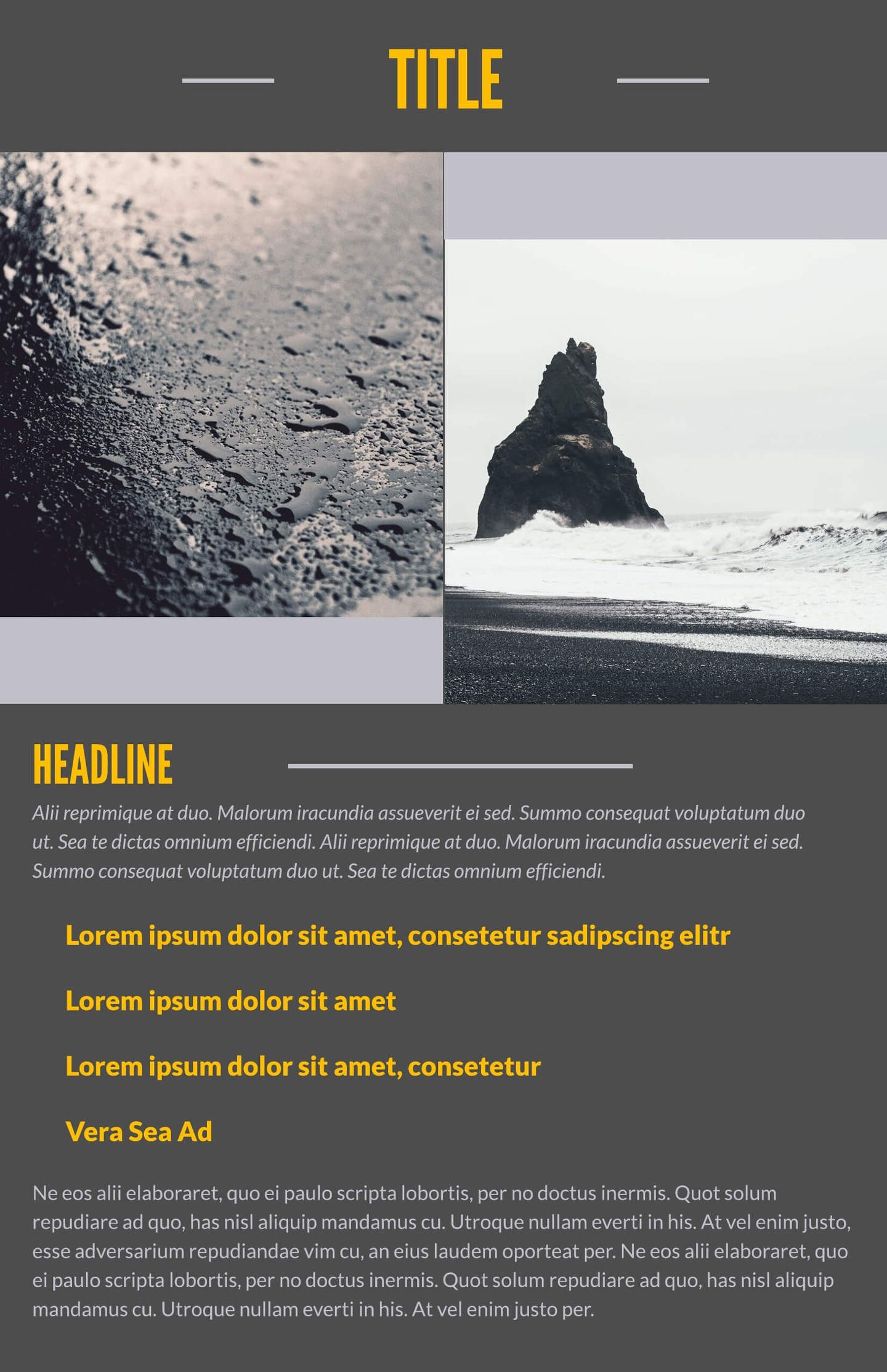 grey skies business leaflet template