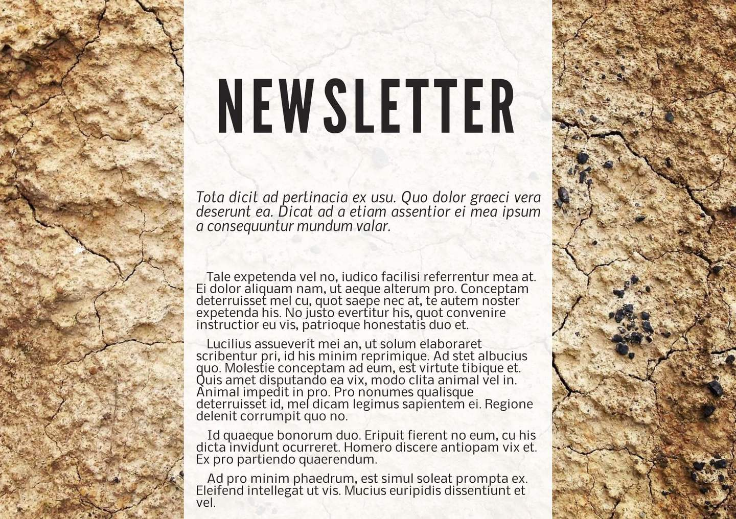 newsletter templates examples lucidpress terra cotta digital newsletter template