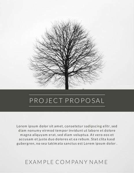 Minimalist gray toned project proposal template