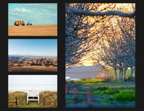 Horizontal photo collage