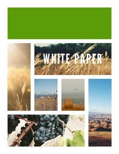 White Paper Template | Lucidpress