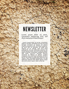 terra cotta newsletter design