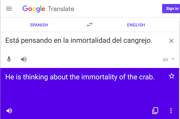 Google translation of a Spanish idiom